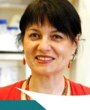 Francesca Levi-Schaffer Ph.D.